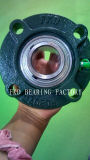 Fkd/Fe/Hhb Pillow Block Bearing /Bearing Units /Flange Cartridge Units (UCFC206)