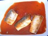 Venda quente enlatada da cavala 425g/peixes enlatados/alimento enlatado