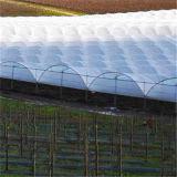 Type de tension serre chaude de voûte de tissu de film enduit résistant de l'espace libre ETFE de vent