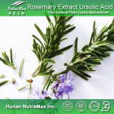 100%Natural Rosemary Extract 2.5%~90% Rosmarinic Acid