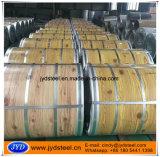 Grano di legno PPGI/PPGL del rivestimento della pellicola