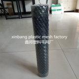 Qualitäts-Plastikmaschendraht/Plastikineinander greifen-Filetarbeit