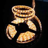 세륨 EMC LVD RoHS 보장 2 년, SMD3528 60LED/M IP68 온난한 백색 LED 지구 빛