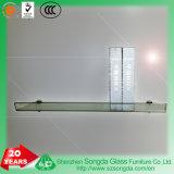 明確な/曇らされたガラスの非緩和された曲がった装飾的なガラス壁の棚