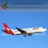 De internationale Vrachtvervoerder van de Lucht van de Logistiek van de Cargadoor Van China aan wereldwijd