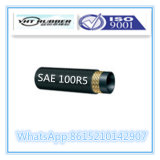 ISO 9001 승인되는 SAE 100 R5 유압 호스 Stocklot