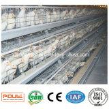 아프리카 최신 판매 가금 농기구 닭 건전지 감금소