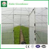 Serra di plastica della Singolo-Portata di Qingzhou con il sistema di controllo