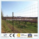 Het gebruikte Landbouwbedrijf galvaniseerde Dierlijke Omheining/de Omheining van het Ijzer (Factory&Exporter)