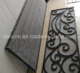 Оптовые самомоднейшие передние конструкции двери утюга для дома