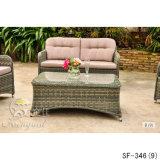 Напольные комплекты софы, мебель ротанга патио, комплекты софы сада (SF-346)