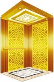 La trazione Gearless Vvvf guida a casa l'elevatore della villa con la tecnologia tedesca (RLS-251)