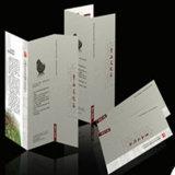 Feuillets Lustrés de Promo D'insecte de Publicité de Papier D'art de Qualité