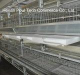 De automatische Kooi van de Jonge kip voor het Landbouwbedrijf van het Gevogelte (het Frame van het Type van H)
