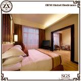 Mobilia bianca del lusso del lenzuolo dell'hotel