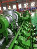Kilowatt-Generator für Erdgas-Biogas-Kohle-Gas LNG CNG LPG