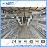 Gaiolas da galinha da camada do ovo da exploração avícola para a venda
