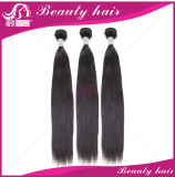Unverarbeitete Jungfrau-brasilianische Haar-Menschenhaar-Extension des Förderung-brasilianische Jungfrau-Haar-gerade brasilianische geraden Haar-3bundles