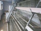 Vente chaude de certificat automatique de cage de poulet d'ISO9001