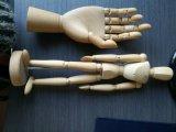 Maniquíes de madera de la mano de los maniquíes de la mano del color