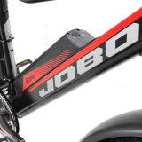 매우 눈, 모래 및 바닷가 En15194를 위한 시스템을%s 가진 1000W 전기 자전거 뚱뚱한 자전거