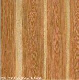 Aço pre pintado da grão de madeira (noz clara)