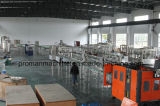 Sistema de tratamiento de aguas del equipo del tratamiento de aguas del sistema del purificador del agua del RO