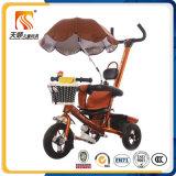 Triciclo de três crianças dos brinquedos da bicicleta da roda com telhado