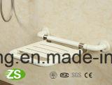 シャワーのシートの高品質の浴室のシャワーの壁