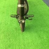 2つの車輪のFoldable電気バイクのEバイク