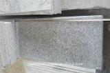 Azulejo gris del granito de China G603 para la venta