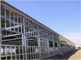 Purlin de profil de la structure métallique C Z fait à la machine en Chine