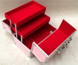 Caso portátil de alumínio profissional da vaidade da composição da caixa da beleza do projeto novo (Bdr-161)