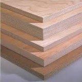 imprensa quente da classe elevada de 18mm 1220*2440mm madeira compensada do vidoeiro de 13 dobras