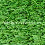 40 millimetri che modific il terrenoare l'erba artificiale del giardino