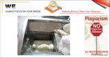 (Zentrales gefüllt) Lutscher-Pflanze (K8019002)