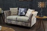 Sofa moderne de tissu de 2 Seater à vendre (FOH-CBCK63)