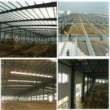 La Arabia Saudita China hizo Q345 el almacén ligero de la estructura de acero