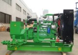 Industriële Generators van het Gebruik van het Huis van de Generator van het Aardgas van China Lvhuan 20kw de Stille