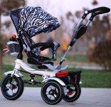 2015 de nieuwe Jonge geitjes Trike Met drie wielen van de Opdringer van het Metaal van het Ontwerp (okm-1256)