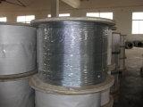 corda galvanizzata 6X7+FC del filo di acciaio