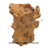 L'en bois classique sans racine de traitement découpant le baril élevé