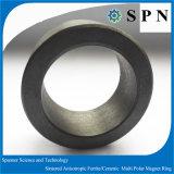 常置亜鉄酸塩のステップ・モータのための堅い磁石のリング