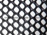 6각형 내밀린 메시 또는 내밀린 플라스틱 메시 또는 그물세공 또는 플라스틱 보통 그물 또는 담 또는 스크린