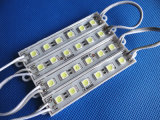 DC24V SMD 5050 6LED Waterproof o módulo do diodo emissor de luz
