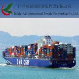 Pleine expédition du chargement FCL de conteneur de colis de taux de service d'outre-mer de logistique de Chine vers la Nouvelle Zélande