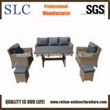 Pranzando sofà (SC-A7625)