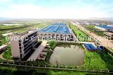 Изготовление альтернатора Китая 4 Поляк высокой эффективности безщеточное