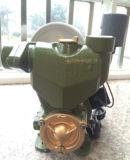 Elektrische selbstansaugende Zusatzselbstpumpe des wasser-1awzb1100 1.1kw