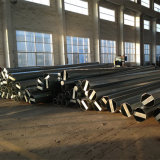 Gute Qualität preiswerter Preis galvanisierter Stahlpole